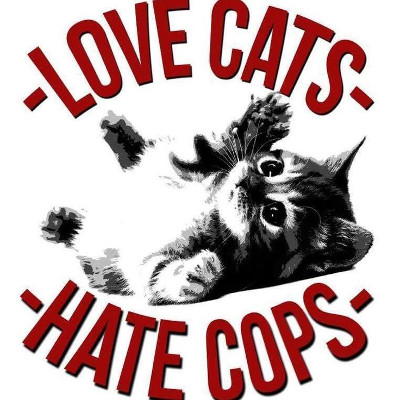 hate cops